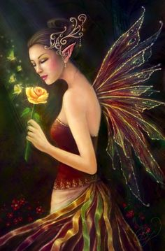 Fairy and the yellow rose