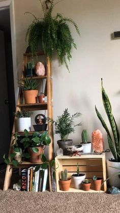 Bedroom Plants Decor, Bohemian Bedroom Decor, House Plants Decor, Plant Decor, Diy Bedroom Decor, Living Room Decor, Diy Home Decor, Bedroom Decor For Couples, Room With Plants