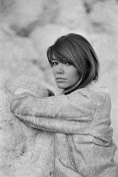 Françoise Hardy in Nice on December France♥️ Françoise Hardy, French Pop, Timeless Photography, Beyond Beauty, Jane Birkin, Alexa Chung, Woman Crush, Most Beautiful Women, Fashion Beauty