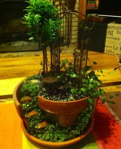 Miniature Garden.  love this one!!!