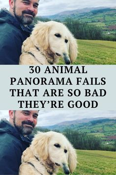 Who doesn't love a good panoramic shot - this phone technology is perfect for capturing Terrible Jokes, Corny Jokes, Be Perfect, Fails, Funny Animals, Ninja Funny, Funniest Jokes, Disney Jokes, Pepsi
