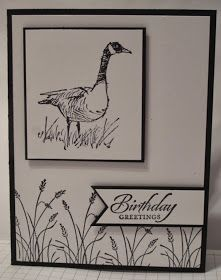 Stampin' Up! ... handmade birthday card from In My Craft Room: Wetlands Beginner Card ... black and white ... clean lines ... like the layout ...