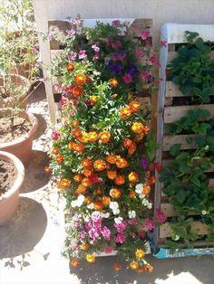 Pallet Vertical Gardens - 15 DIY Pallet Furniture for Outdoors | 99 Pallets