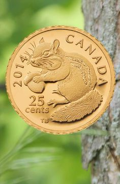 2014 0.5 g Pure Gold Coin - Chipmunk