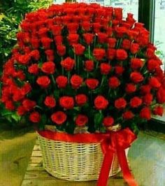 Happy Anniversary tabassum and Amjad Beautiful Rose Flowers, Flowers Gif, Beautiful Flowers Wallpapers, Beautiful Flower Arrangements, Love Rose, My Flower, Pretty Flowers, Floral Arrangements, Types Of Flowers