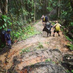 Kokoda Track - it's not going to be easy, but it will be worth it. www.dokokoda.com www.papuanewguinea.travel/trekking