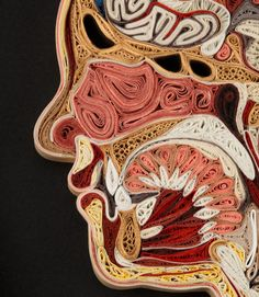This is anatomical paper filigree (quilling), for crying out loud. It's so creep cool.
