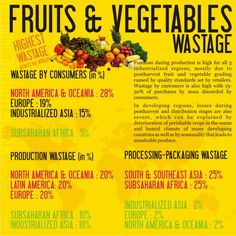 Food Waste Visualized [Infographic 2 of 2]
