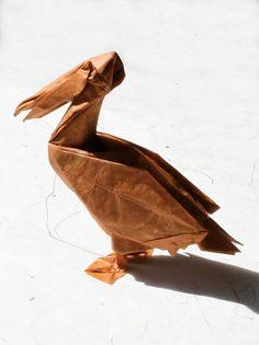 pelican | Flickr - Photo Sharing!