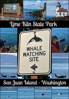 Lime Kiln State Park on San Juan Island in Washington is one of the BEST places in the world for viewing orcas in the wild... from land! We had great luck on our visit and hope you do too!
