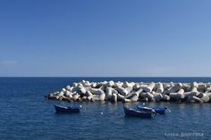 Madera: Funchal top 5 i 2 ogrody / Funchal