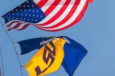 lousiana state flag