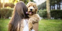People feel better when they're around their pet? It's true. Spending quality time with a dog, cat or other animal can have a positive impact ...