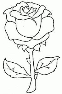 de-rosa-para-colorir-1-7-flores-197x300.gif (197×300)