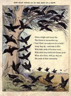 Crow poem