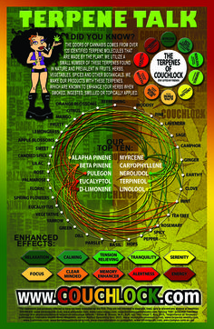 TERPENE TALK. Once again, they can't make it any easier to understand. Good to know info :-) Peace