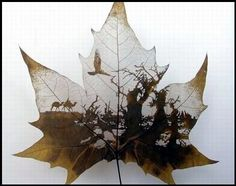each leaf is dried and the outer layers are delicately removed with a knife, while carefully keeping the veins intact so not to compromise the stability of the form. A single leaf-work may take months of work, and once complete it is then preserved within a frame. (doesn't list artist)
