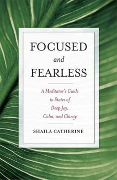 Focused and Fearless:A Meditator's Guide to States of Deep Joy, Calm, and Clarity
