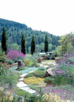 How to create a Mediterranean-style herb garden