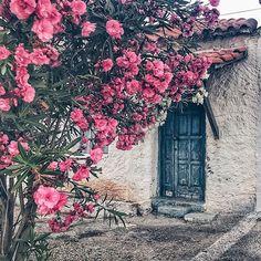 MARATHOPOLI Small Town, Messinia (Στην γραφική κοομώπολη της Μαραθόπολης στην Μεσσηνία), PELOPONNESUS - GREECE   ⠀⠀ by @isthatandiek ⠀⠀⠀⠀⠀⠀⠀⠀⠀⠀⠀⠀⠀⠀...