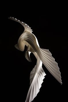 Bird - Richard Sweeney
