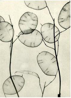 Willy Zielke(German,1930
