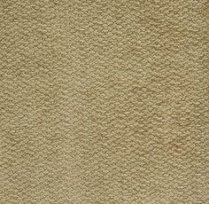 Broderick Taupe by Pindler Discount Upholstery Fabric, Fabric Decor, Swatch, Pattern Design, Taupe, How To Make, Free Shipping, Patterns, Color