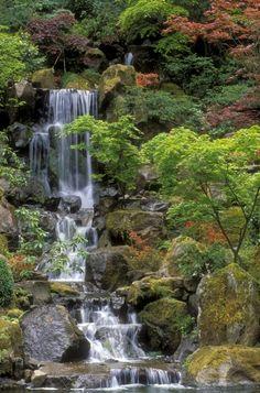Japanese Garden Waterfall | By Sandra Bronstein