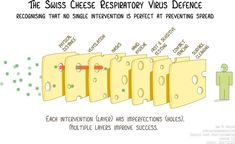 The Swiss cheese respiratory virus defence model via @MackayIM on Twitter