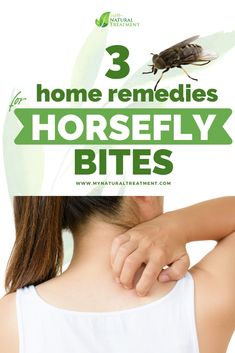 3 Home Remedies for Horsefly Bites - Cure Horsefly Sting with essential oils. #horsefly #horseflybite Natural Disinfectant, Time Heals, Insect Bites, Skin Problems, Simple House, Natural Skin, Healthy Skin, Home Remedies, The Cure