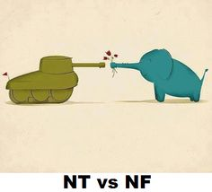NT vs NF. I am both (INFJ&INTJ) This elephant might shoot cannon balls, this tank may sprout bouquets.
