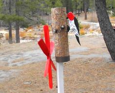 Plans-Patterns-For-Woodpecker-Whirligig