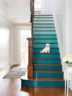 Add a pop of color to your house with one of our 50 ideas!