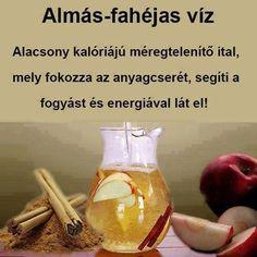HERBÁCIÓ 2008/ 3. 16- 24. Almás- fahéjas víz elkészítéséhez szükséges: 2 liter tiszta víz, 1 alma, 1 rúd fahéj Tegyük egy üvegbe a vizet, a vastagabb szeletekre vágott (kedvenc) almát és a fahéjat. Tegyük fél órára hűtőszekrénybe, hogy összeérjenek az ízek. Hungarian Recipes, Recipes From Heaven, Hot Sauce Bottles, Healthy Drinks, Lemonade, Healthy Lifestyle, Food And Drink, Health Fitness, Smoothie