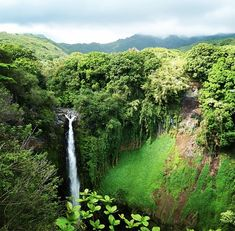 Hamakua Coast road trip from Hilo to Honokaa is a fairy tale journey where time appears to stand still and nature's grandeur comes full stage