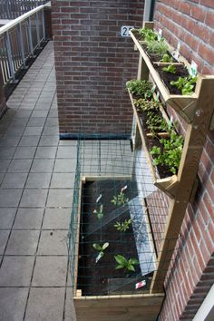 DIY apartment garden boxes