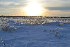 Winter in east Poland