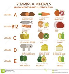 Is your body getting the essential vitamins it needs to stay healthy? Find out what vitamins are essential to daily health + what you can eat to get them. How To Stay Healthy, Healthy Life, Mineral Food, Salmon Eggs, Pregnancy Cravings, Health Eating, Health Matters, C'est Bon, Vitamin E