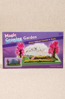 DIY Crystal Magic Growing Garden