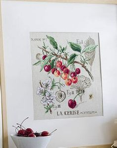 Cross stitch - flowers: botanicals - Prunus cerasus - cherry (free pattern with chart)