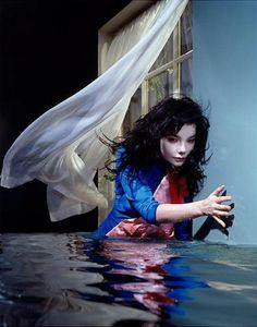 宇宙的冰島精靈-Björk 碧玉(下) @ 綠‧建築家 :: searchouse.net