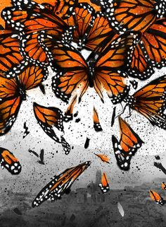 A Mexican conglomerate wants to revive mining in a protected reserve for monarch butterflies.