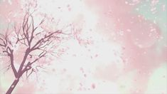 Plum Blossom. #floral  #flower  #wreath  #illustration  #decoration  #leaf  #bouquet  #wedding  #blossom  #background  #petal  #natural  #pink  #invitation  #bloom  #rose  #romantic  #decorative  #animation  #beautiful