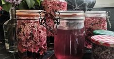 Assouplissant maison aux fleurs de lilas Kombucha, Homemade Cookies, Dry Flowers, Fabric Softener, Red Apple