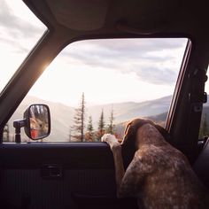 11 Pet Friendly Vacation Ideas from Martha Stewart. There's nothing like enjoying the great outdoors with your best furry friend. Mans Best Friend, Best Friends, Outdoor Fotografie, On The Road Again, Famous Photographers, Adventure Is Out There, The Great Outdoors, Adventure Travel, Adventure Awaits