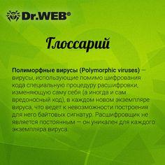 Глоссарий Dr.Web: полиморфные вирусы (Polymorphic viruses). #DrWeb