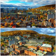 #RoyalVictoria hospital, #McGill University campus and #MolsonStadium at the edge of a... | Use Instagram online! Websta is the Best Instagram Web Viewer!