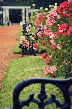This urban park, Parque Tres de Febrero in Buenos Aires is beloved by all Porteños, since it is the perfect escape from the hustle and bustle of such an enormous city. El Rosedal, inside the park is a beautiful rose garden.