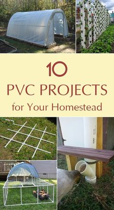 10 Wonderful PVC projects to update your homestead. 10 Wonderful PVC projects to update your homestead. Pvc Pipe Projects, Outdoor Projects, Garden Projects, Home Projects, Farm Projects, Pvc Pipe Garden Ideas, Pvc Pipe Crafts, Backyard Projects, Welding Projects