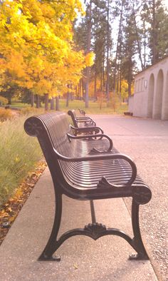 Park benches at Comstock